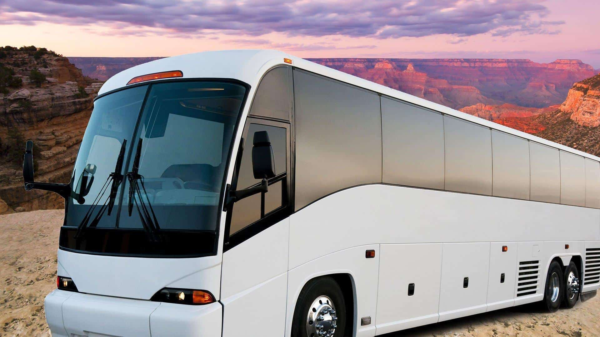 Grand Canyon South Rim Bus Tour From Vegas – Best Prices